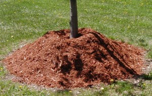 How Much Mulch Do You Need?